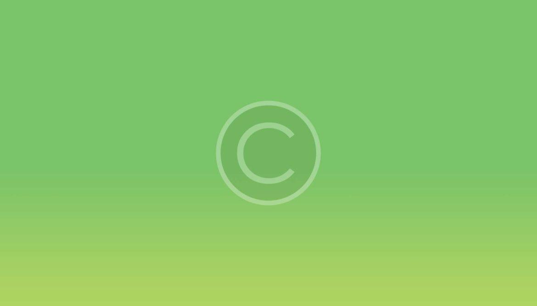 Layer-4014.jpg